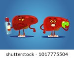 healthy and unhealthy liver... | Shutterstock .eps vector #1017775504