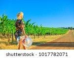 scenic landscape of vineyard... | Shutterstock . vector #1017782071