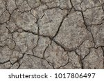 the surface of the earth is... | Shutterstock . vector #1017806497