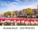 Amsterdam  Netherlands  City...