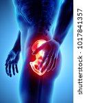 3d illustration  hip painful... | Shutterstock . vector #1017841357