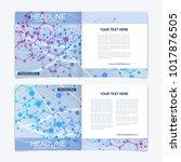 scientific templates square... | Shutterstock .eps vector #1017876505