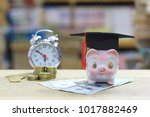 graduation hat on piggy in the... | Shutterstock . vector #1017882469