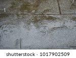 rain drops on the granite floor | Shutterstock . vector #1017902509