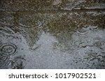 rain drops on the granite floor | Shutterstock . vector #1017902521