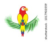icon of a sitting parrot.... | Shutterstock .eps vector #1017903559