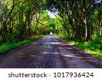 wet asphalt after rain in... | Shutterstock . vector #1017936424