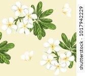 seamless pattern  background... | Shutterstock .eps vector #1017942229