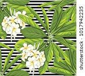 seamless pattern  background... | Shutterstock .eps vector #1017942235