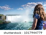 beautiful niagara falls in the... | Shutterstock . vector #1017944779