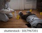 investigation  forensic...   Shutterstock . vector #1017967351