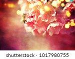 spring flowers. sakura | Shutterstock . vector #1017980755