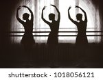 graceful silhouettes of... | Shutterstock . vector #1018056121