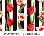 seamless pattern with red and... | Shutterstock .eps vector #1018063879