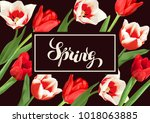 spring background with red and... | Shutterstock .eps vector #1018063885