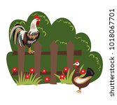 poultry on the farm   Shutterstock .eps vector #1018067701