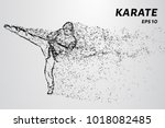 karate of particles. karate man ... | Shutterstock .eps vector #1018082485