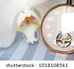 white orchid and golden swatch | Shutterstock . vector #1018108561