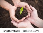 two farmer hands holding and... | Shutterstock . vector #1018110691