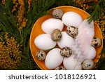 easter table setting with white ... | Shutterstock . vector #1018126921