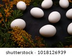 easter table setting with white ... | Shutterstock . vector #1018126939