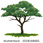 vector colored graphic... | Shutterstock .eps vector #1018168681
