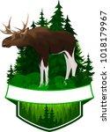 Vector Woodland Emblem With...