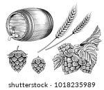 beer ingredients set  barrel ... | Shutterstock .eps vector #1018235989
