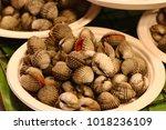 Small photo of Thai street seafood, Cardiidae, ark shell, grill