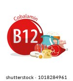 vitamin b12. food sources.... | Shutterstock .eps vector #1018284961