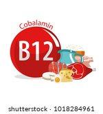 vitamin b12. food sources....   Shutterstock .eps vector #1018284961