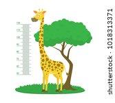 cartoon meter wall with giraffe ... | Shutterstock .eps vector #1018313371