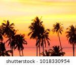fiery backdrop idyllic...   Shutterstock . vector #1018330954