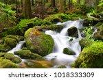 waterfall on mountain stream in ... | Shutterstock . vector #1018333309