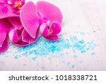 spa sea salt and flower branch...   Shutterstock . vector #1018338721