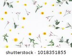 Stock photo flowers composition round frame made of yellow and pink flowers eucalyptus branches on white 1018351855