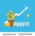 profit concept. financial... | Shutterstock .eps vector #1018355044