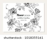 invitation and greeting card... | Shutterstock .eps vector #1018355161