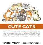 cartoon cute cats and kittens...   Shutterstock .eps vector #1018401901