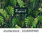 tropical background for wedding ... | Shutterstock .eps vector #1018409485