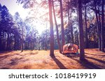 camping tent in pine trees...   Shutterstock . vector #1018419919