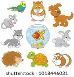 set of pets including a cat  a... | Shutterstock .eps vector #1018446031