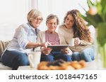 a teenage girl  mother and... | Shutterstock . vector #1018447165