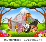 vector illustration of wild... | Shutterstock .eps vector #1018451344