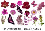 set of red color butterflies... | Shutterstock . vector #1018471531