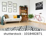 Patterned Carpet And Bicycle I...