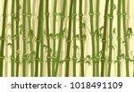 bamboo forest seamless pattern. ...   Shutterstock .eps vector #1018491109