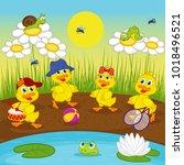 ducklings resting on lake  ... | Shutterstock .eps vector #1018496521