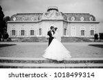black and white photo. european ... | Shutterstock . vector #1018499314