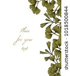 vector card with hand drawn... | Shutterstock .eps vector #1018500844